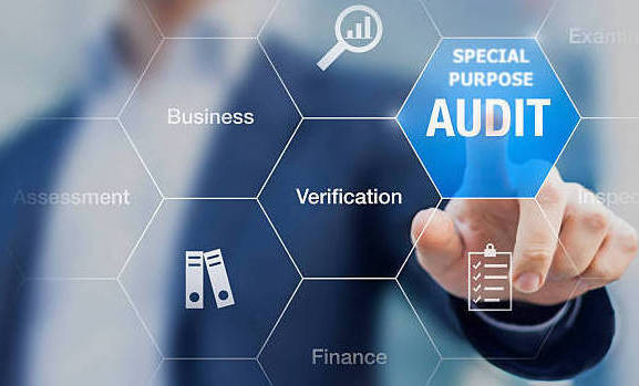 Special Purpose Audit Integrity